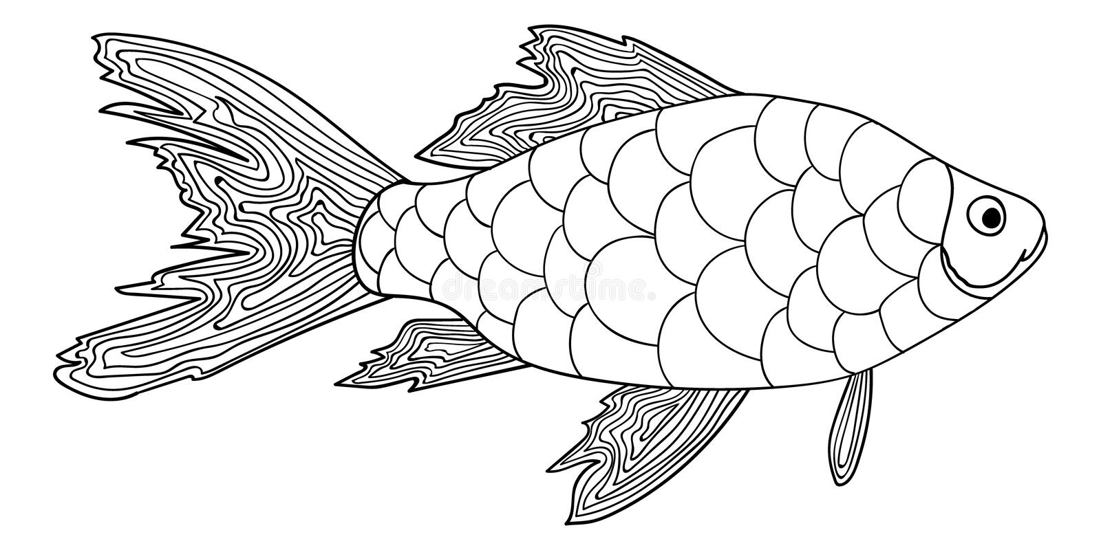 detailed fish coloring pages walleye drawing at getdrawings free download detailed fish coloring pages