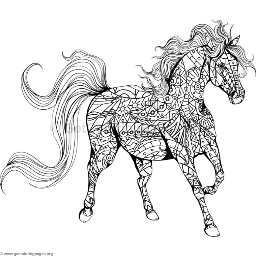 detailed horse coloring pages coloring pages of horses printable free coloring sheets pages coloring detailed horse