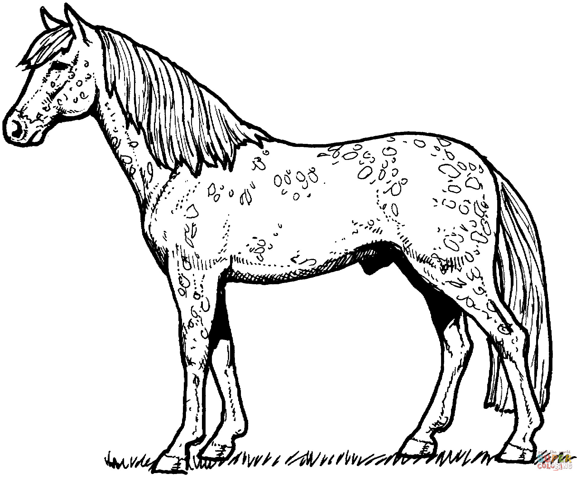 detailed horse coloring pages creative haven dream horses coloring book dover pages detailed coloring horse