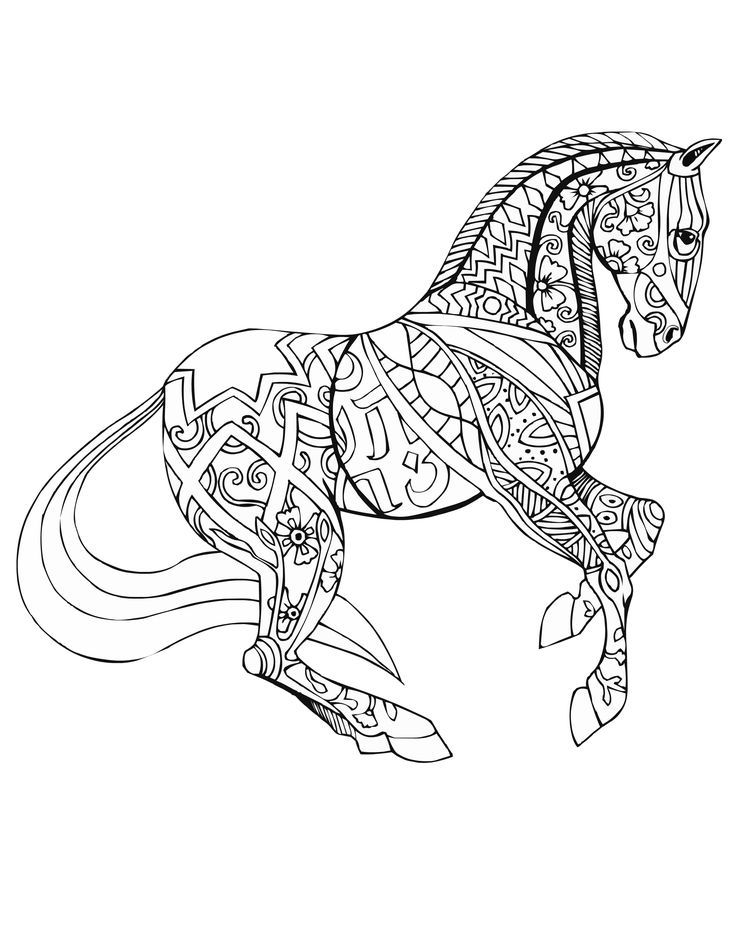detailed horse coloring pages detailed horse coloring pages at getcoloringscom free detailed horse coloring pages
