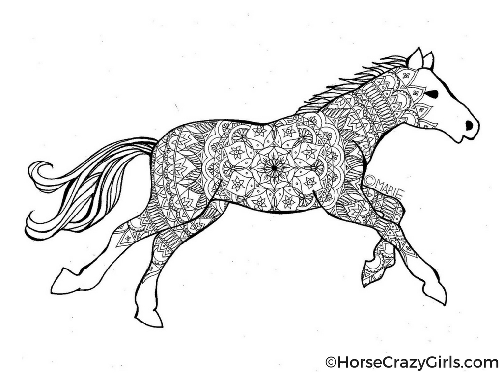 detailed horse coloring pages detailed horse coloring pages at getcoloringscom free horse detailed coloring pages