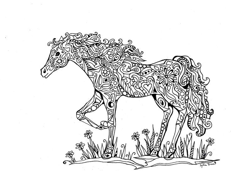 detailed horse coloring pages detailed horse coloring pages for adults coloring pages horse pages detailed coloring