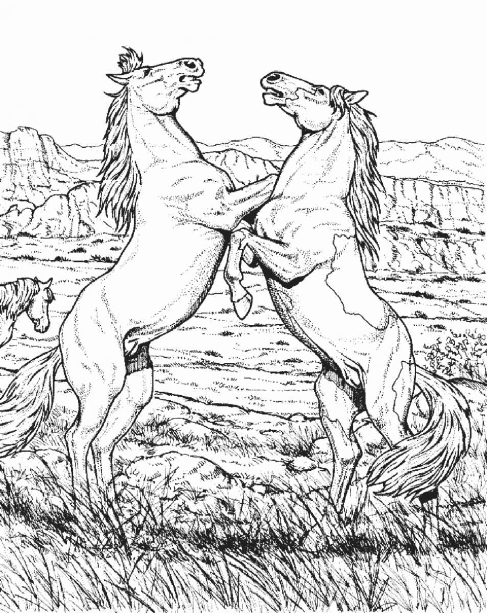 detailed horse coloring pages detailed horse coloring pages pages horse coloring detailed