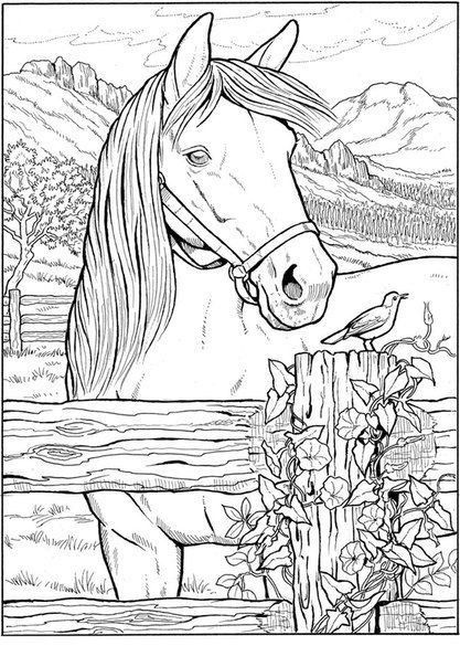 detailed horse coloring pages horse coloring pages for adults best coloring pages for kids horse coloring pages detailed 1 1