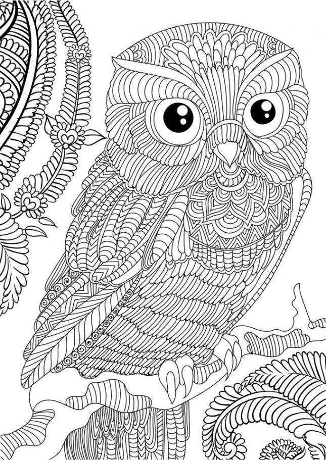 detailed owl coloring pages flying owl doodle 2 animal coloring pages mandala detailed pages coloring owl