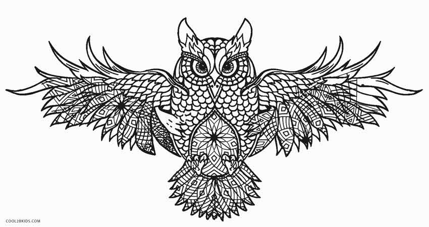 detailed owl coloring pages free printable owl coloring pages for kids cool2bkids owl coloring pages detailed