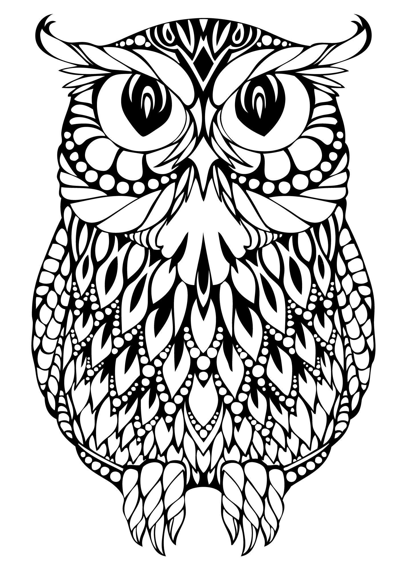 detailed owl coloring pages owl coloring pages for adults free detailed owl coloring coloring owl detailed pages