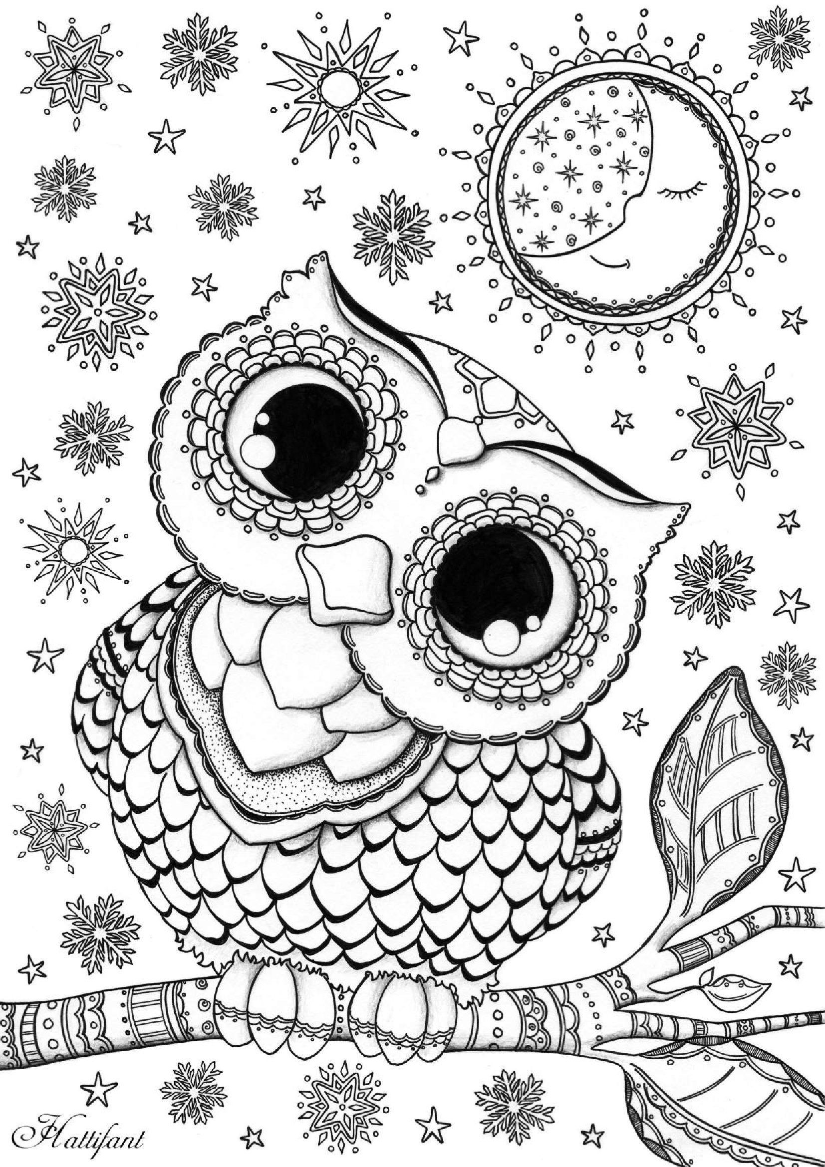detailed owl coloring pages owl coloring pages for adults free detailed owl coloring detailed coloring pages owl 1 1