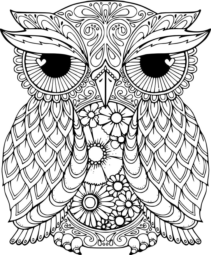 detailed owl coloring pages owl coloring pages for adults free detailed owl coloring detailed coloring pages owl 1 2