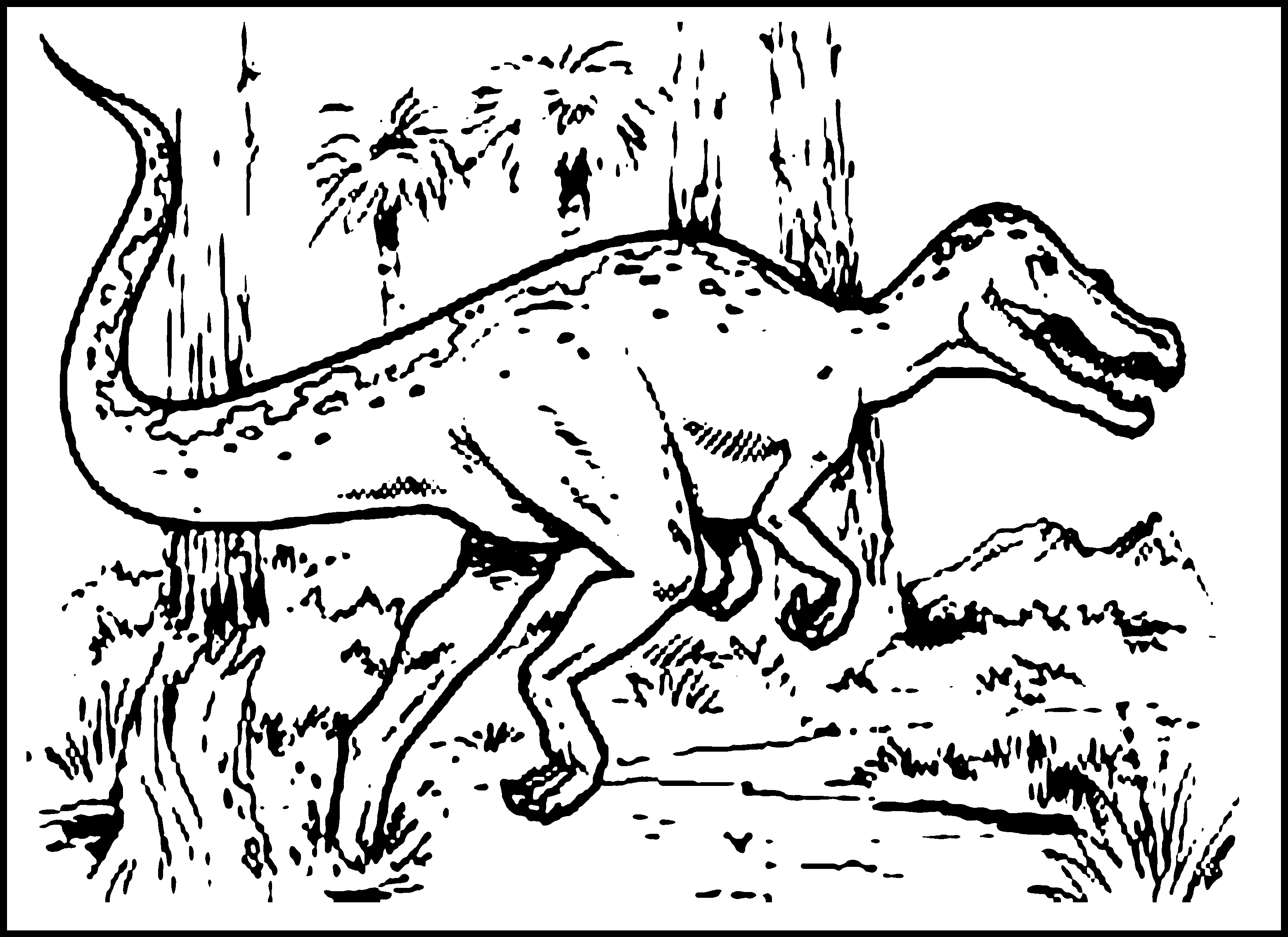 dinasour coloring pages free printable dinosaur coloring pages for kids dinasour pages coloring