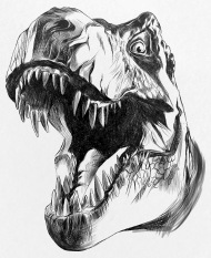 dinosaur images 25 kickass and interesting facts about dinosaurs images dinosaur