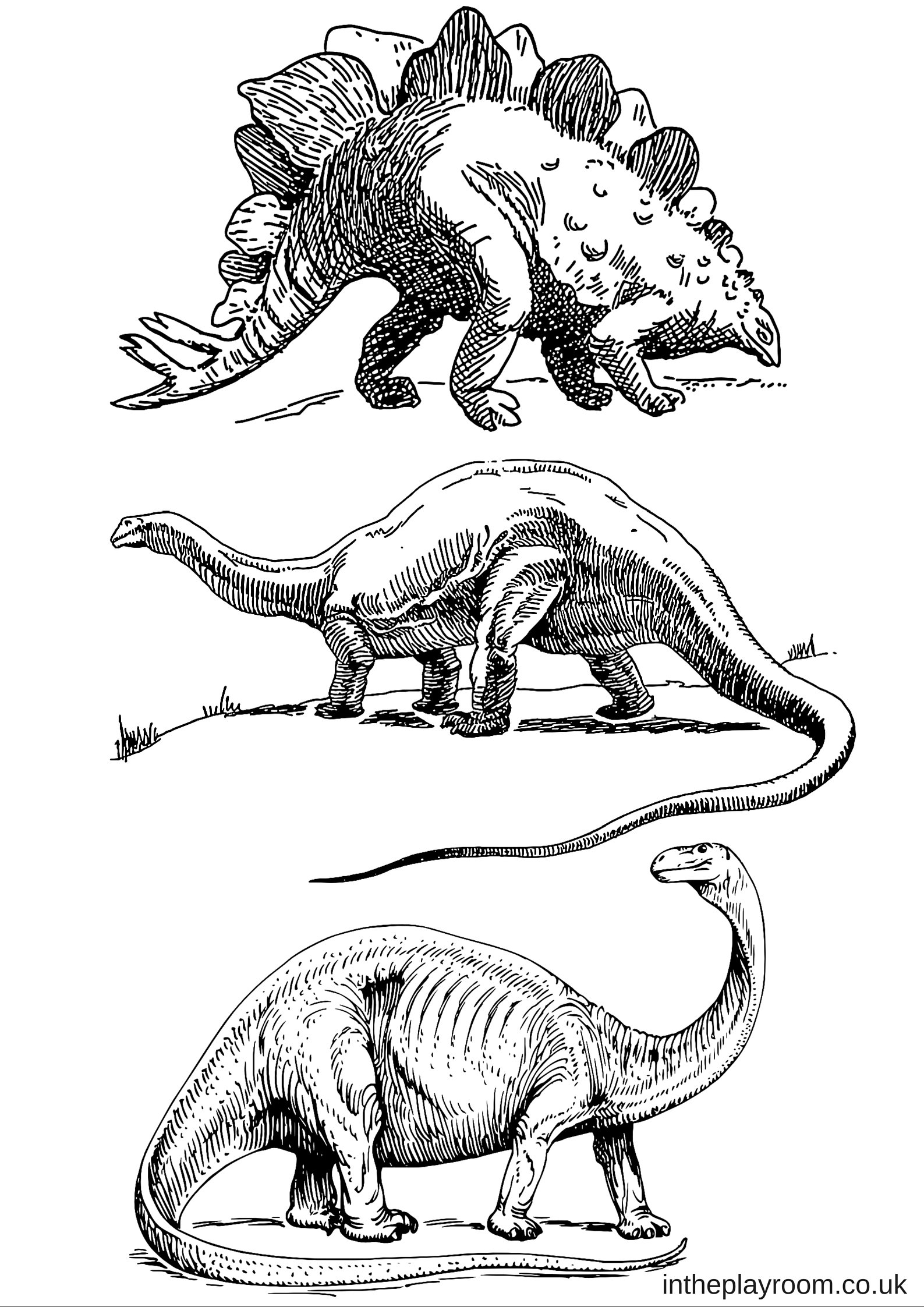 dinosaur images dinosaur colouring pages in the playroom images dinosaur