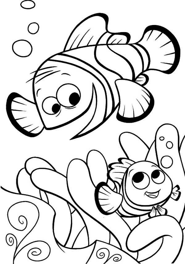 disney finding nemo coloring pages finding nemo coloring pages disneyclipscom finding coloring disney pages nemo