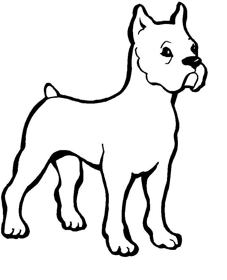 dog coloring in dog breed coloring pages in coloring dog