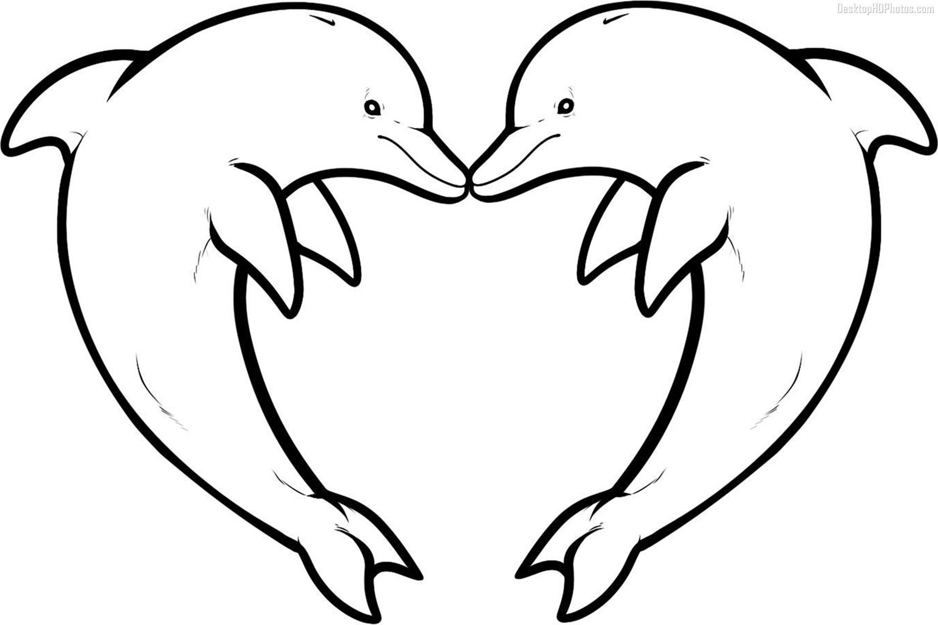 dolphins pictures to color free printable dolphin coloring pages for kids animal place color dolphins to pictures