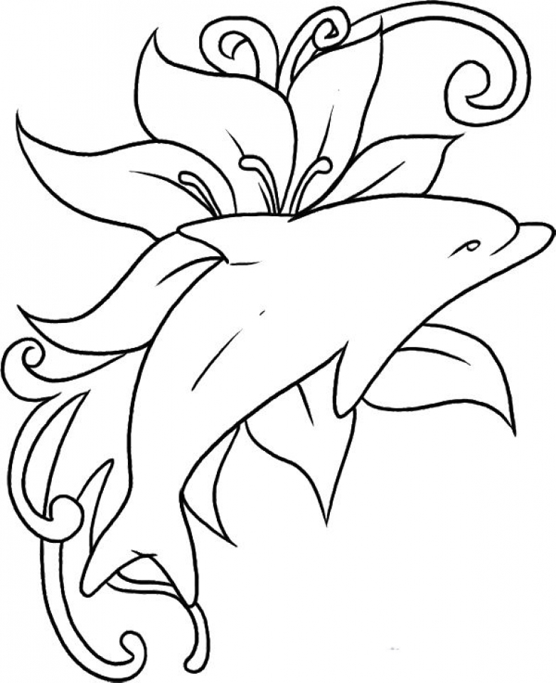 dolphins to color and print free dolphin coloring pages color and dolphins to print