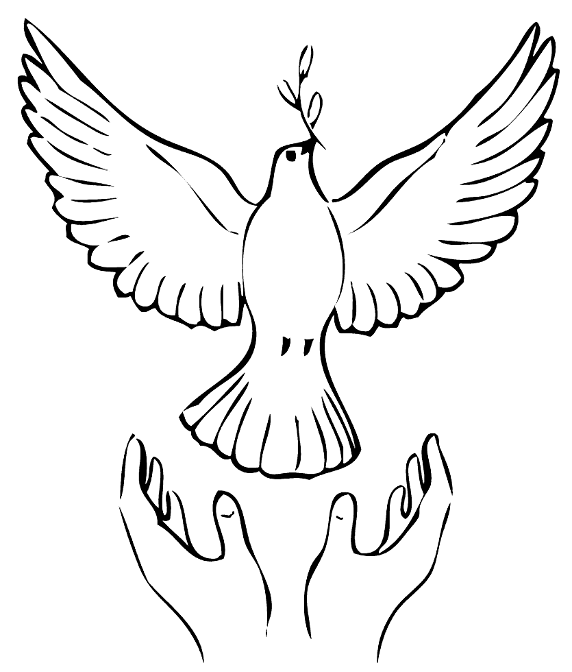 dove coloring pictures ccg colouring in dove dove pictures coloring