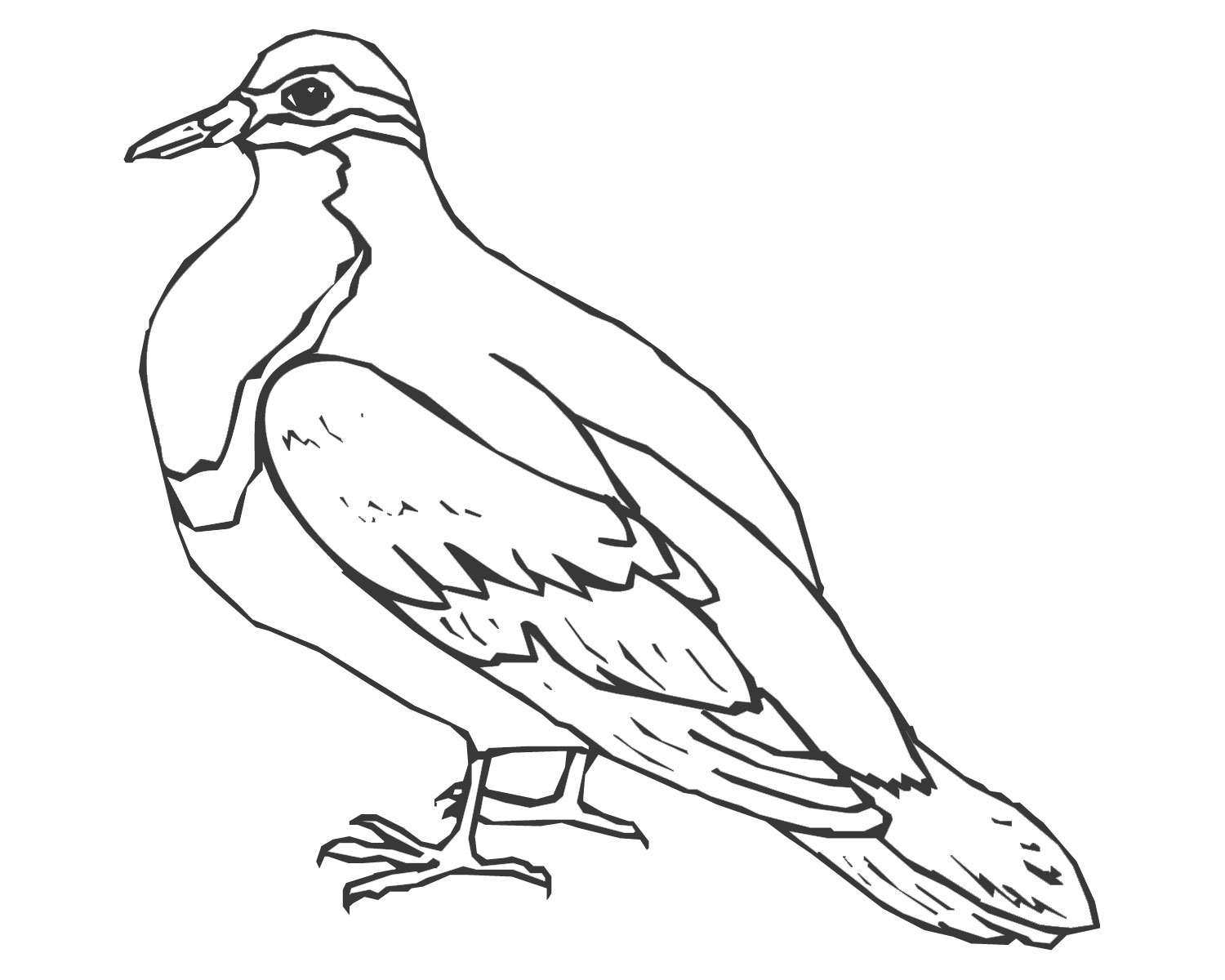 dove coloring pictures dove coloring page ultra coloring pages pictures coloring dove
