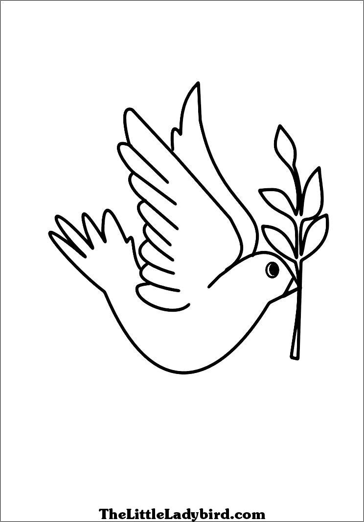 dove coloring pictures dove coloring pages team colors dove pictures coloring