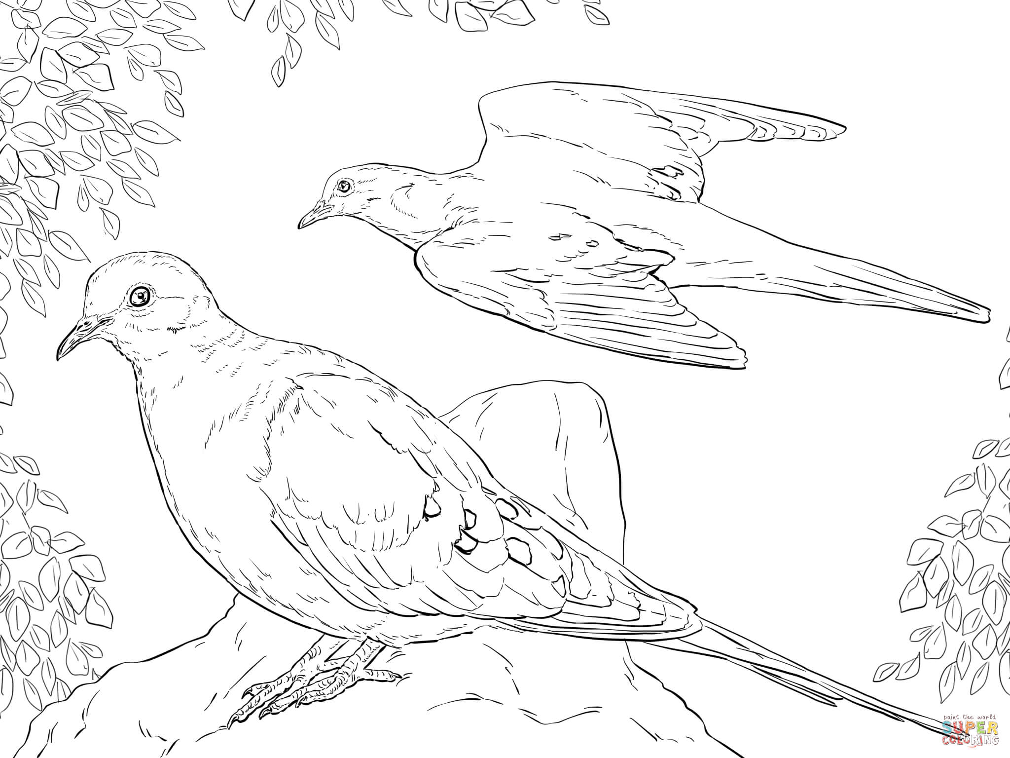 dove coloring pictures free peace dove coloring pages pages coloring home coloring dove pictures