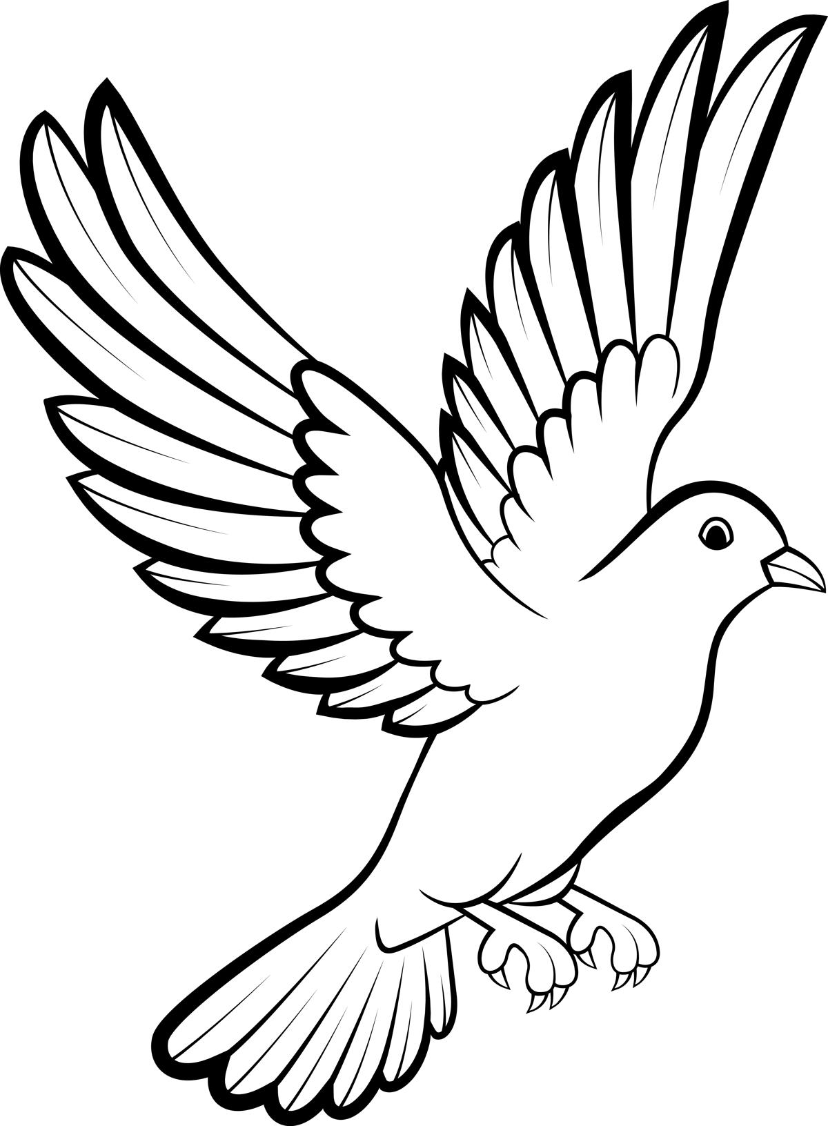 dove drawing black and white dove drawing at paintingvalleycom drawing dove