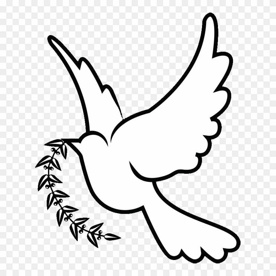 dove drawing holy spirit dove drawing at getdrawings free download dove drawing