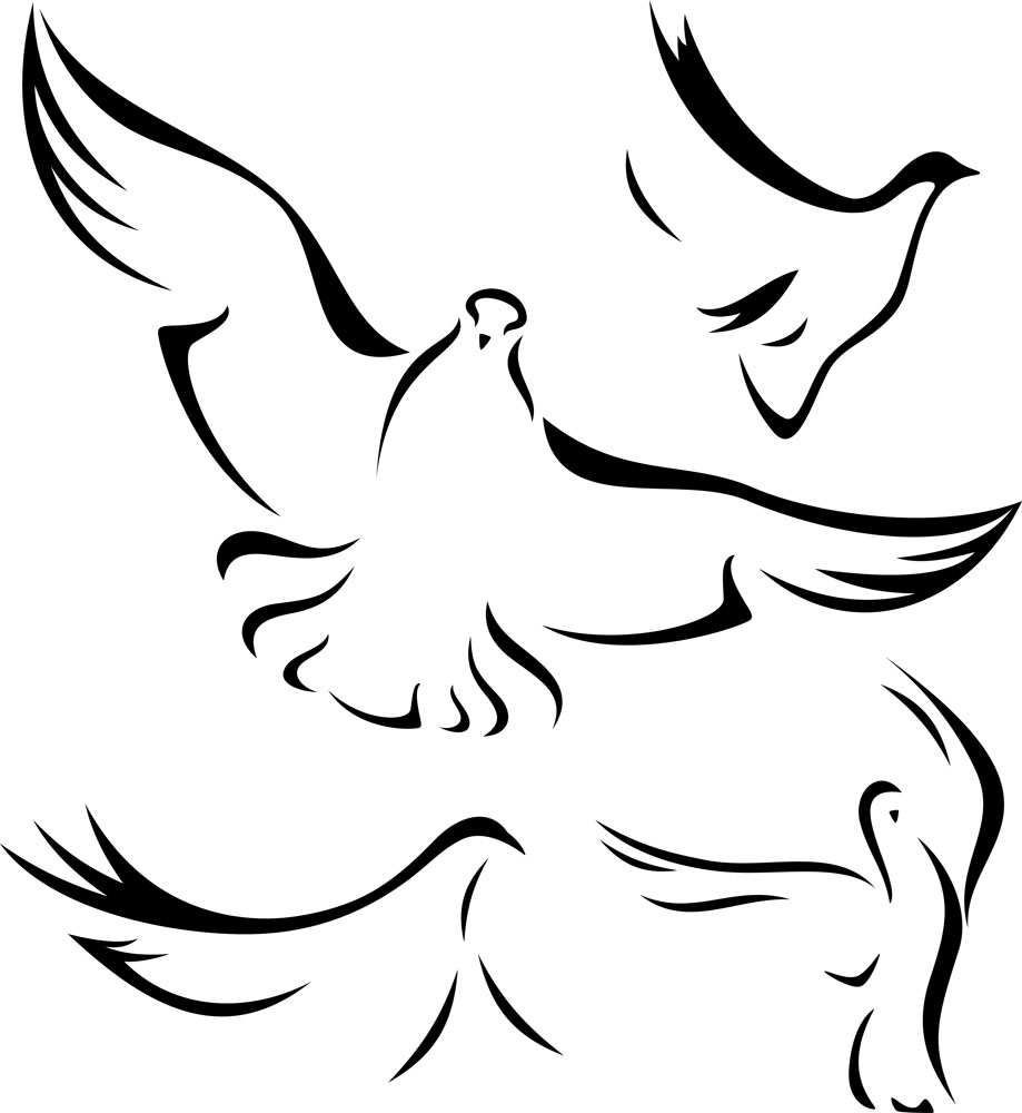 dove drawing white doves drawing at getdrawings free download dove drawing