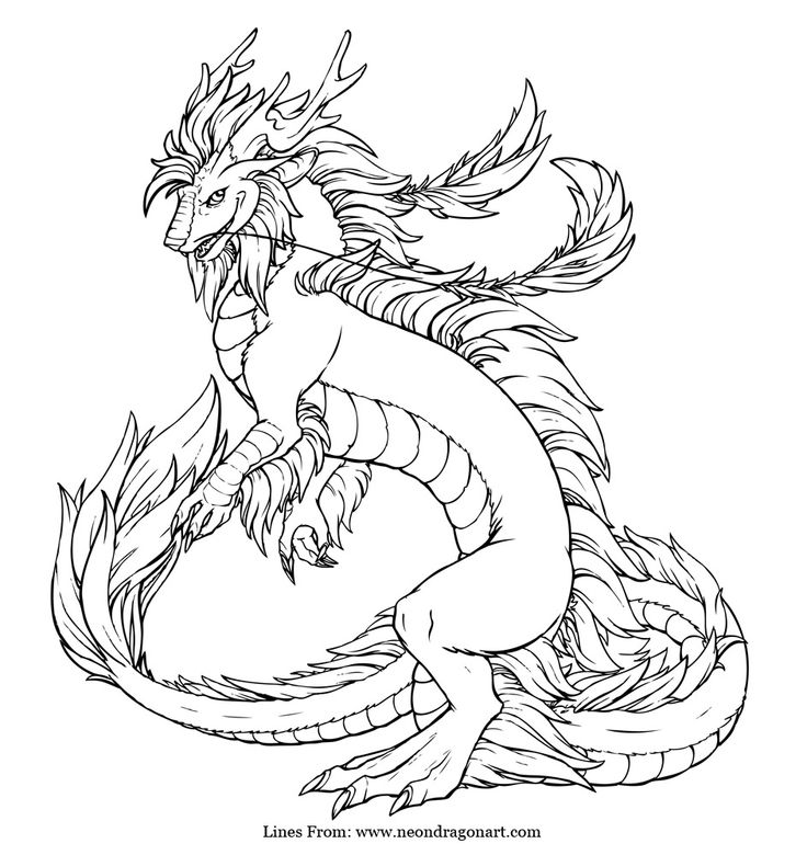 dragon coloring pages hard 14 pics of evil dragon coloring pages hard printable coloring dragon hard pages