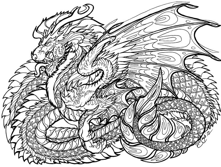 dragon coloring pages hard coloring pages for adults difficult dragons at getdrawings dragon pages coloring hard