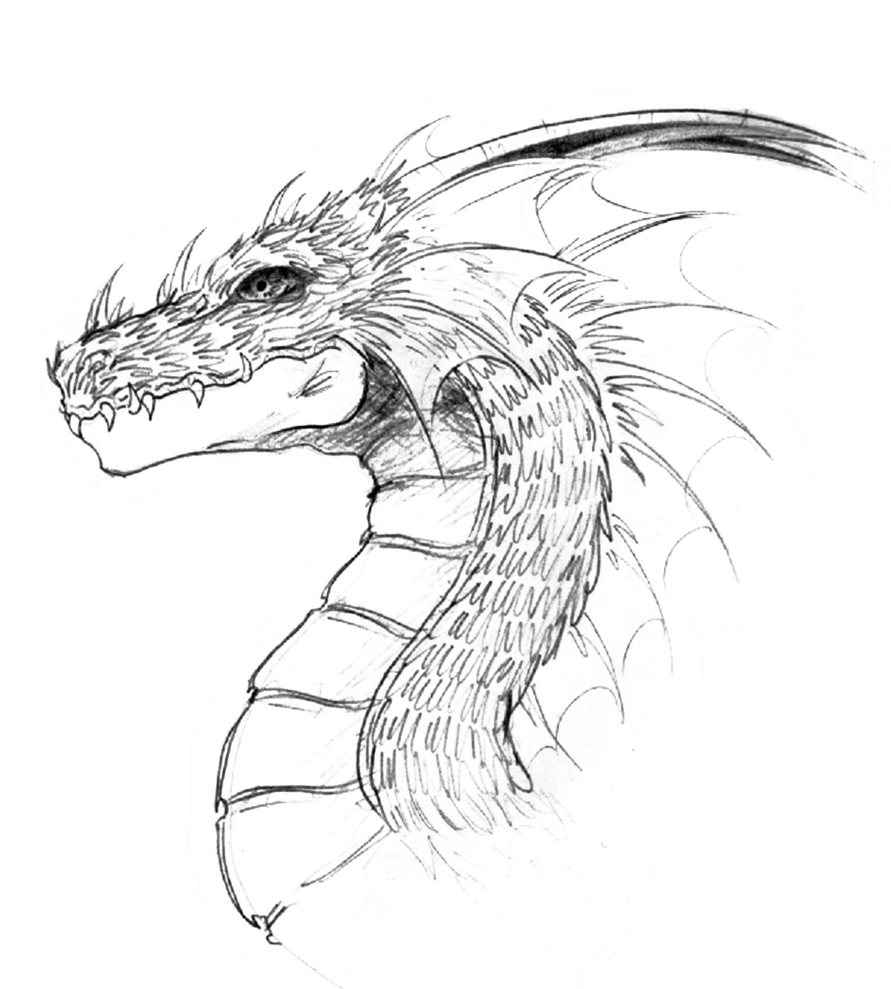 dragon drawing easy best ideas about easy dragon drawings on pinterest dragons easy dragon drawing