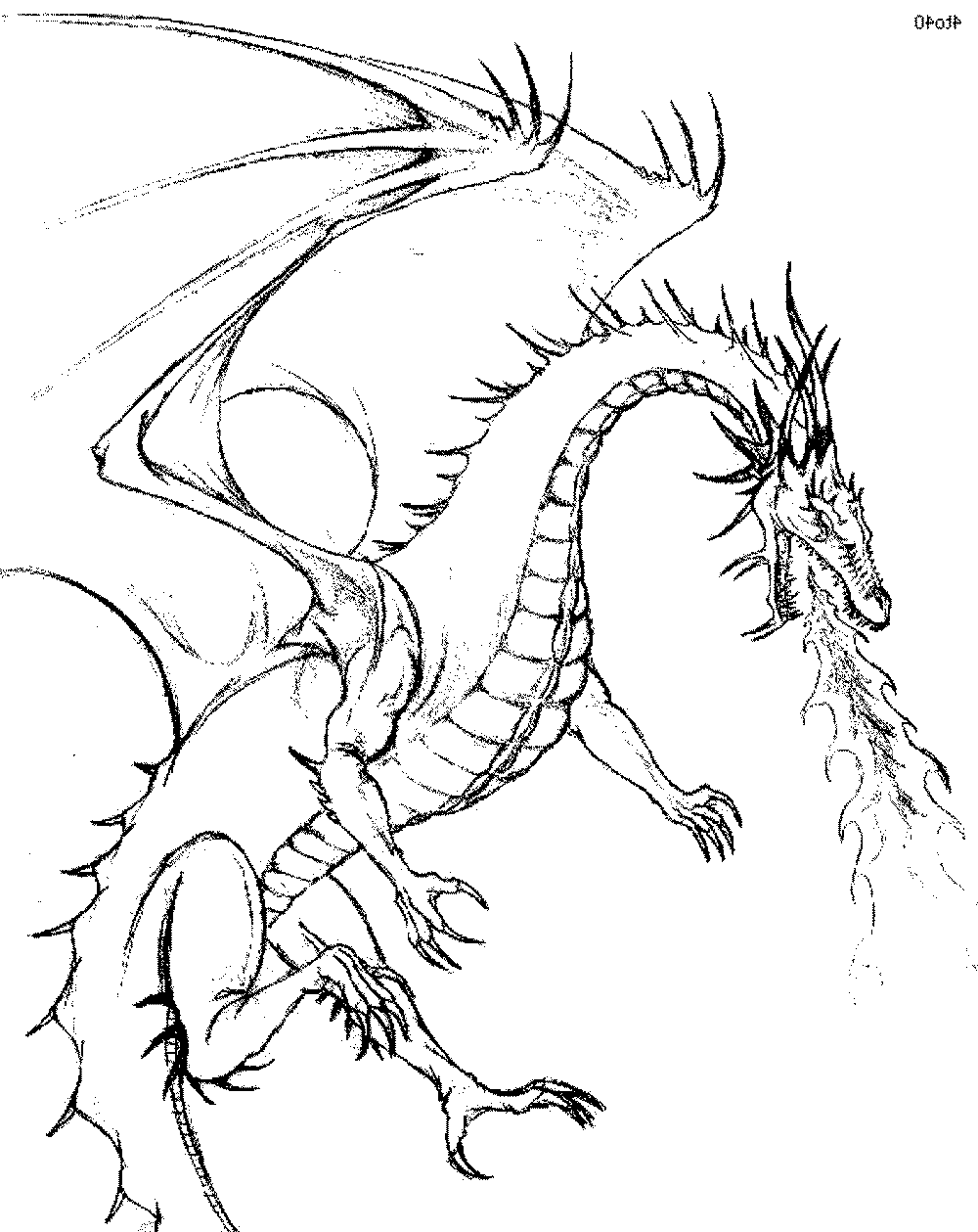 dragon pictures to color and print color the dragon coloring pages in websites dragon pictures and color print to