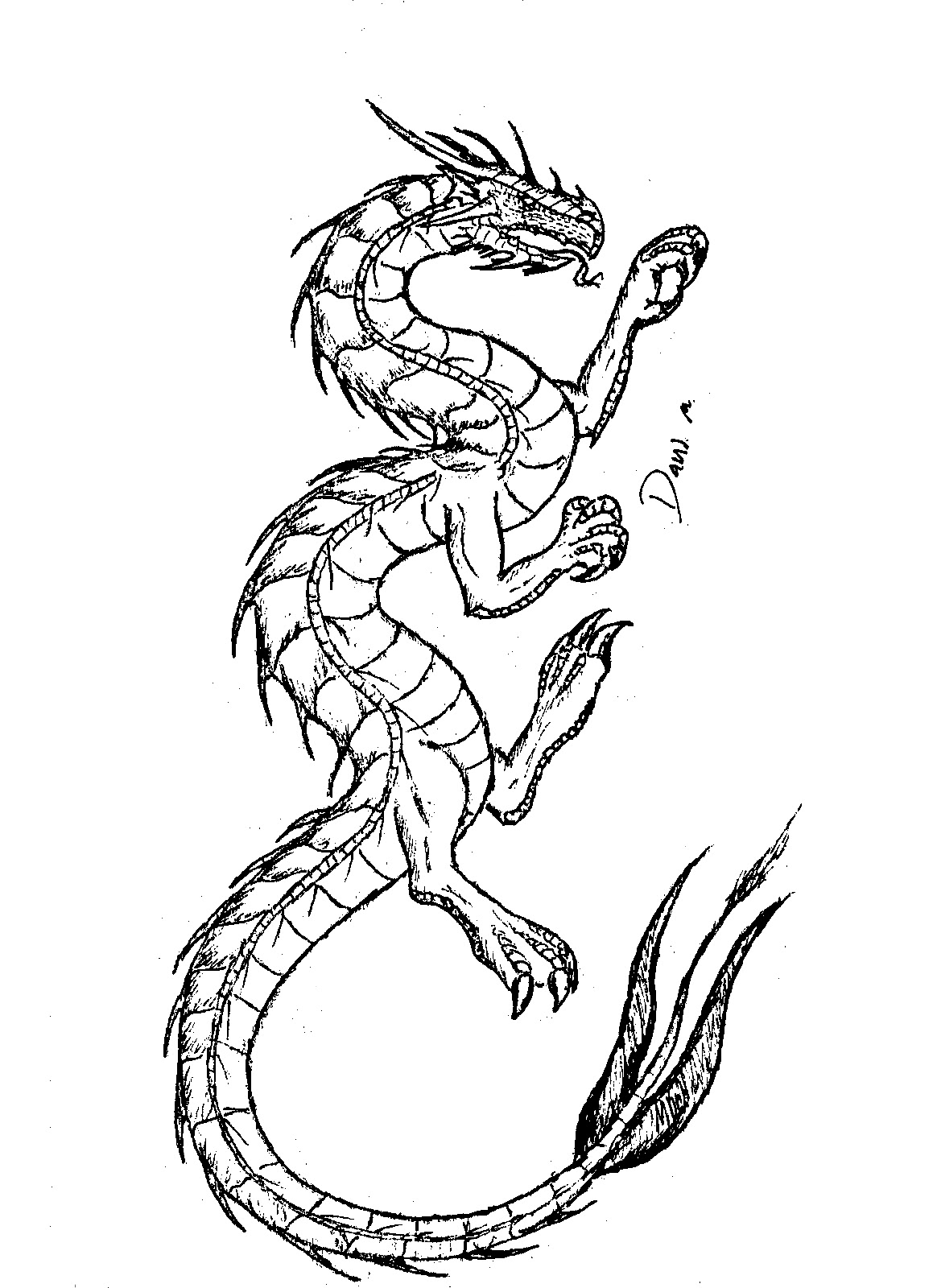 dragon pictures to color and print coloring page world tattoo dragon portrait pictures color print to dragon and