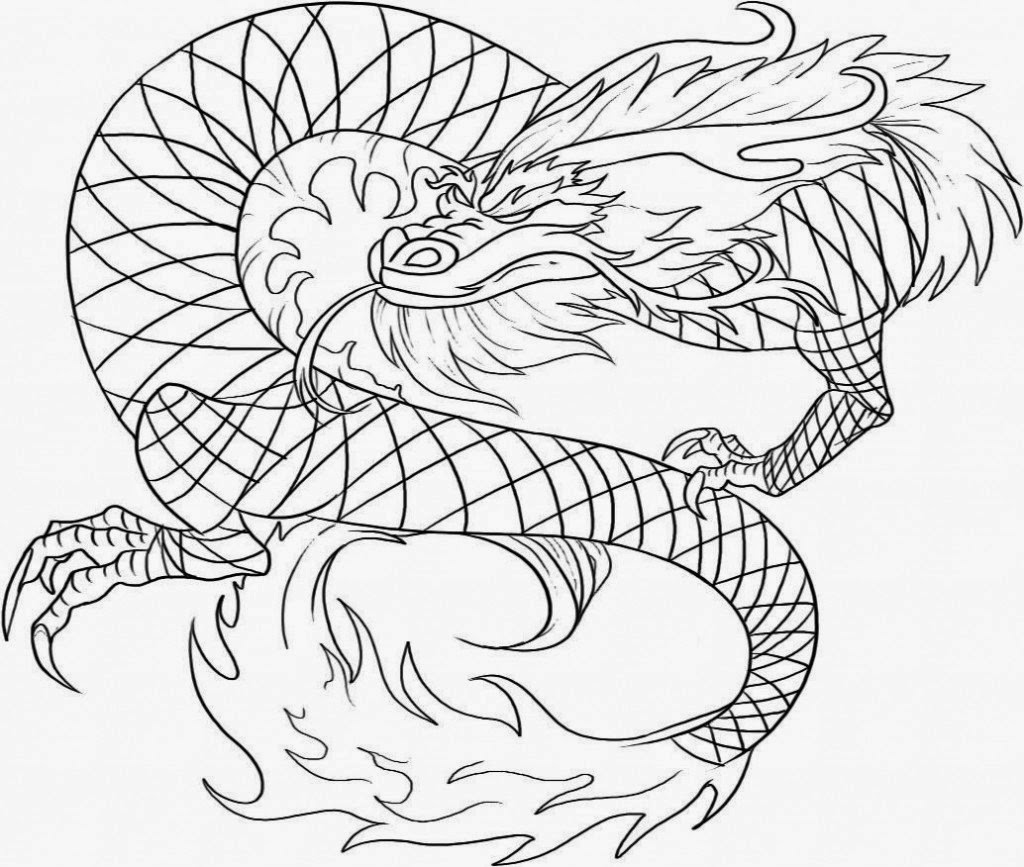 dragon pictures to color and print dragon coloring pages for adults best coloring pages for color dragon print and pictures to