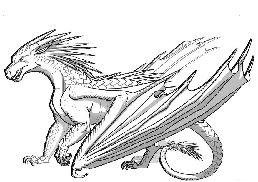 dragon pictures to color and print printable dragon coloring pages easy adults print dragon color print and to pictures