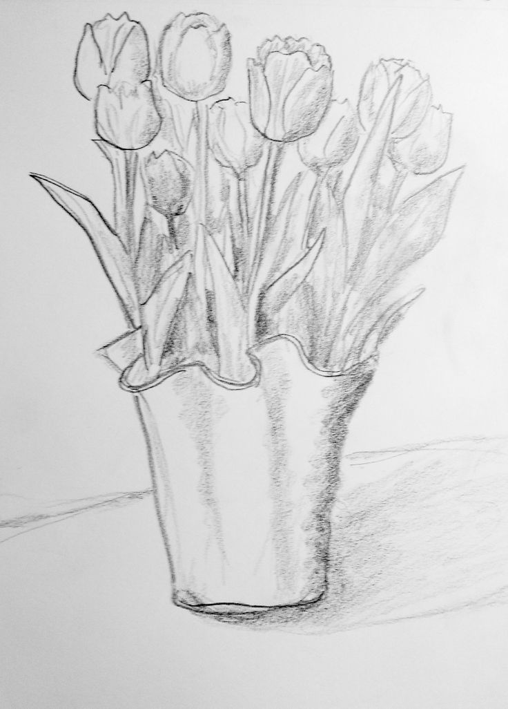drawings of tulips tulip flower graphic black white isolated sketch tulips of drawings