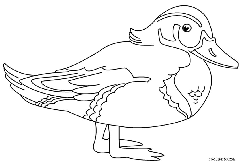 duck coloring book printable duck coloring pages for kids cool2bkids book duck coloring