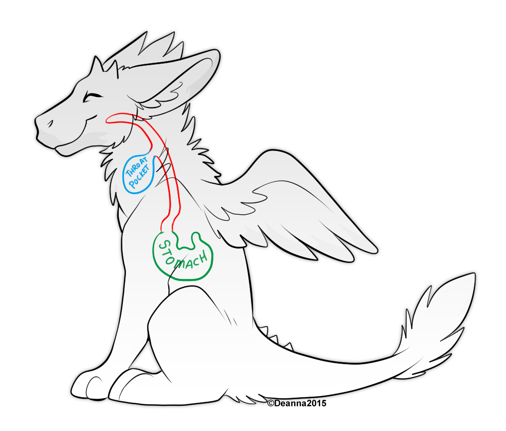 dutch angel dragon coloring pages angel dragon base free to use furry amino coloring dragon pages angel dutch