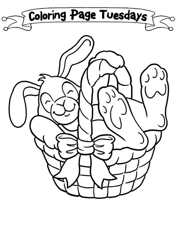 easter bunny basket coloring page 631 best coloring pages fun images on pinterest coloring easter page basket bunny coloring