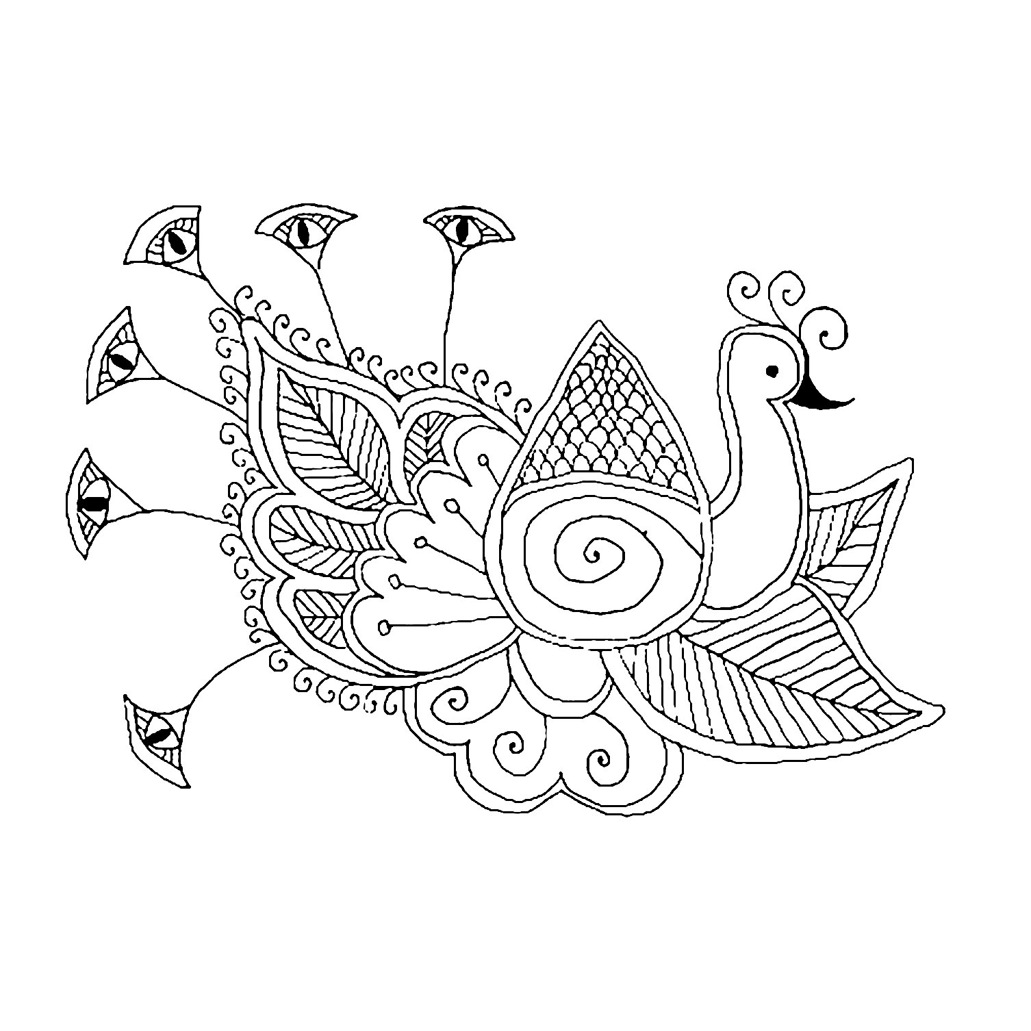 easy cute peacock coloring pages a cute peacock with beautiful eyes plumage coloring page coloring easy peacock cute pages