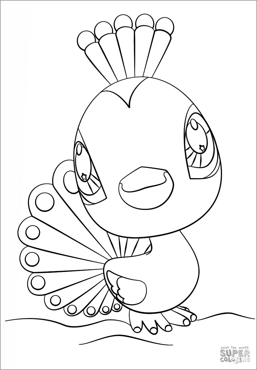 easy cute peacock coloring pages free printable peacock coloring pages for kids pages cute coloring easy peacock