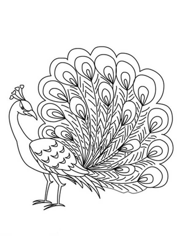 easy cute peacock coloring pages peacock coloring pages coloringbay peacock pages easy coloring cute