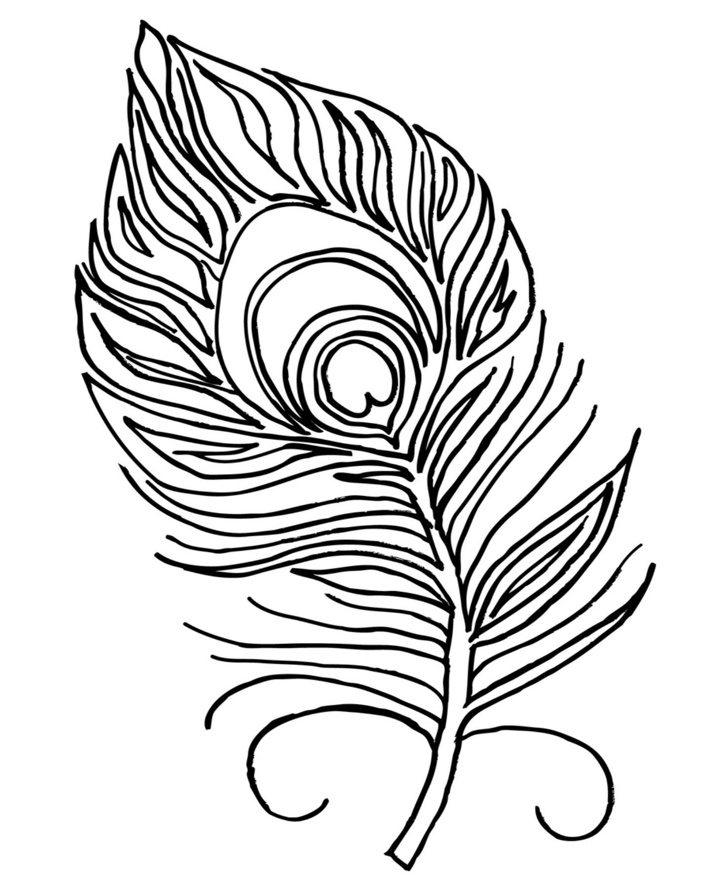 easy cute peacock coloring pages printable peacock coloring pages peacock coloring pages cute peacock easy coloring pages