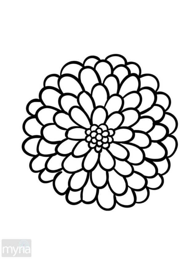 easy flower coloring pages 60 best simple colouring pages images on pinterest easy coloring pages flower