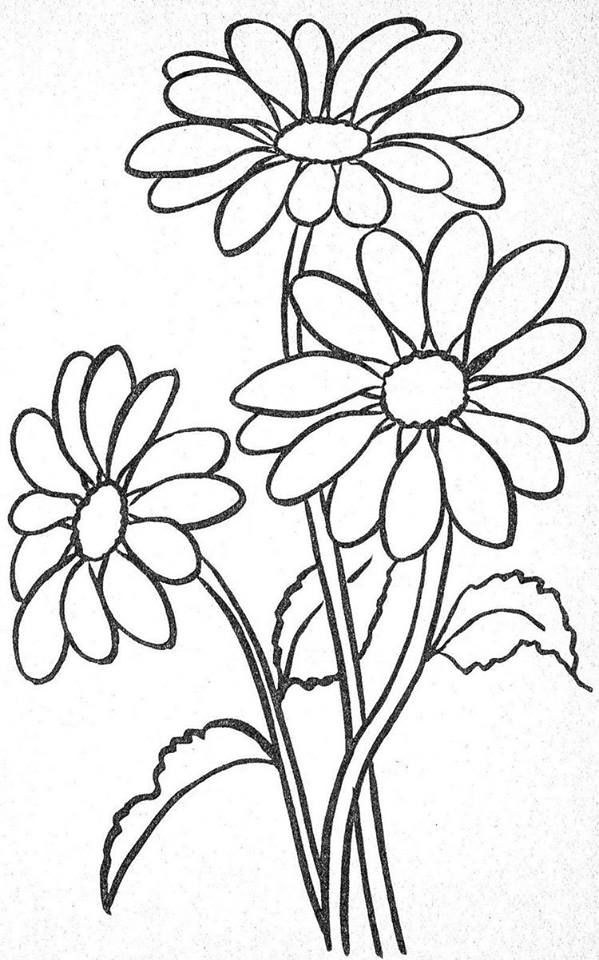 easy flower coloring pages easy spring season flowers and blooms coloring pages easy flower pages coloring