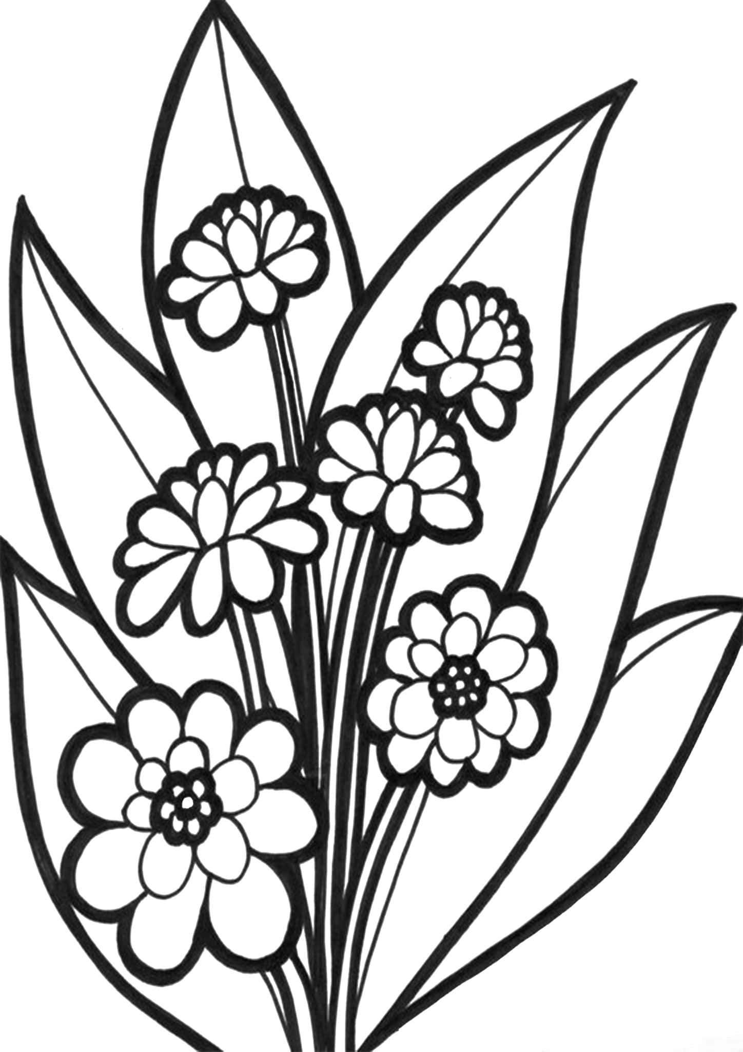 easy flower coloring pages free very easy flowers colouring page lj knight pages easy flower coloring