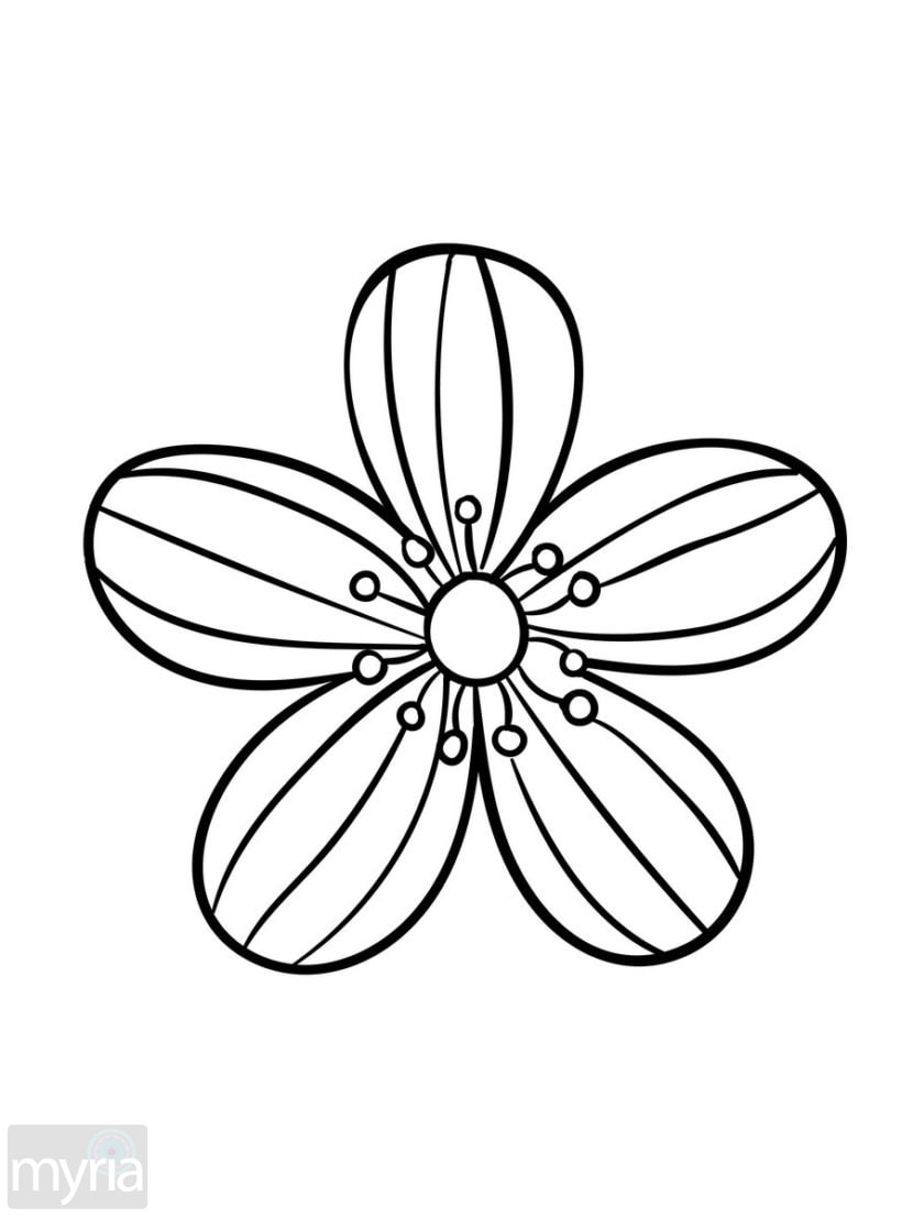 easy flower coloring pages simple flower coloring page coloringcrewcom flower coloring pages easy