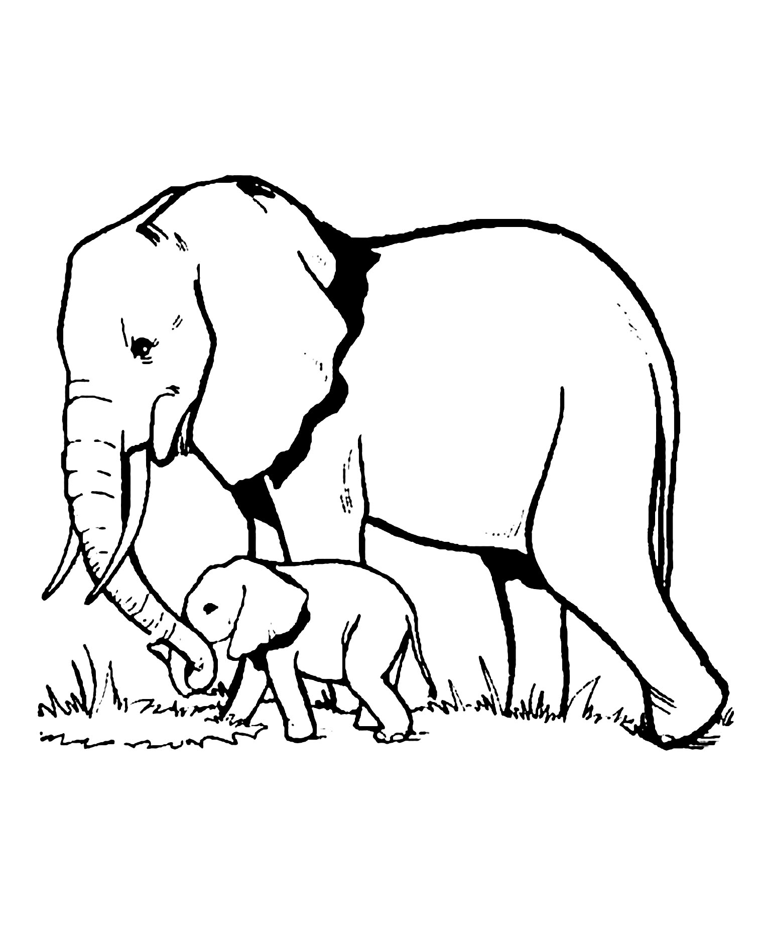 elephant coloring picture elephants free to color for children elephants kids elephant coloring picture