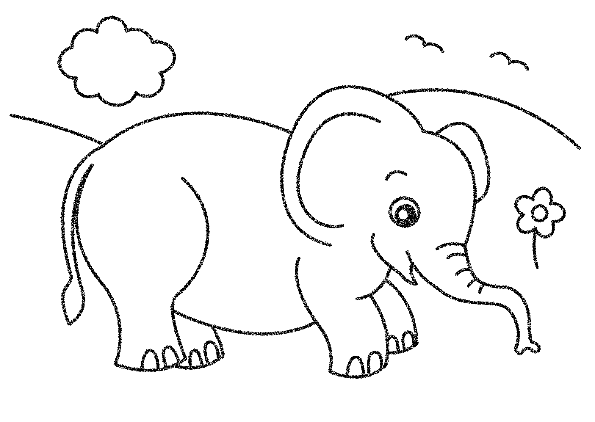 Elephant coloring picture