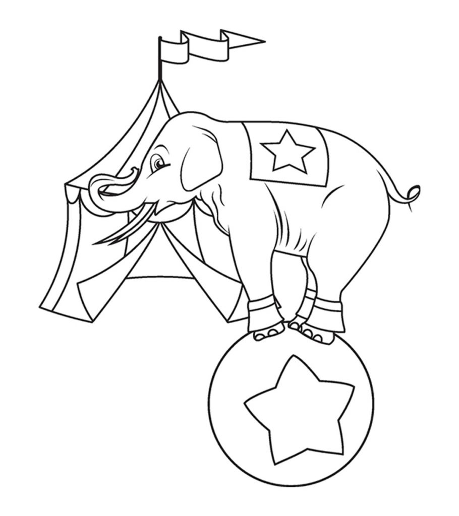 elephant coloring picture top 20 free printable elephant coloring pages online coloring picture elephant