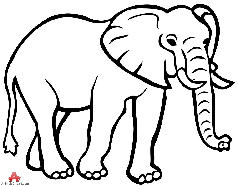 elephant outline coloring page coloring pages for animals elephant big animals coloring page elephant outline coloring